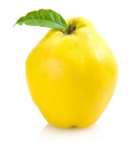 quince_product